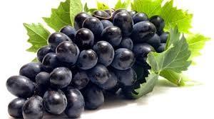 в чем польза черного винограда