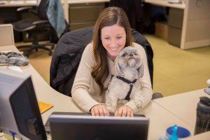 bring pet to work