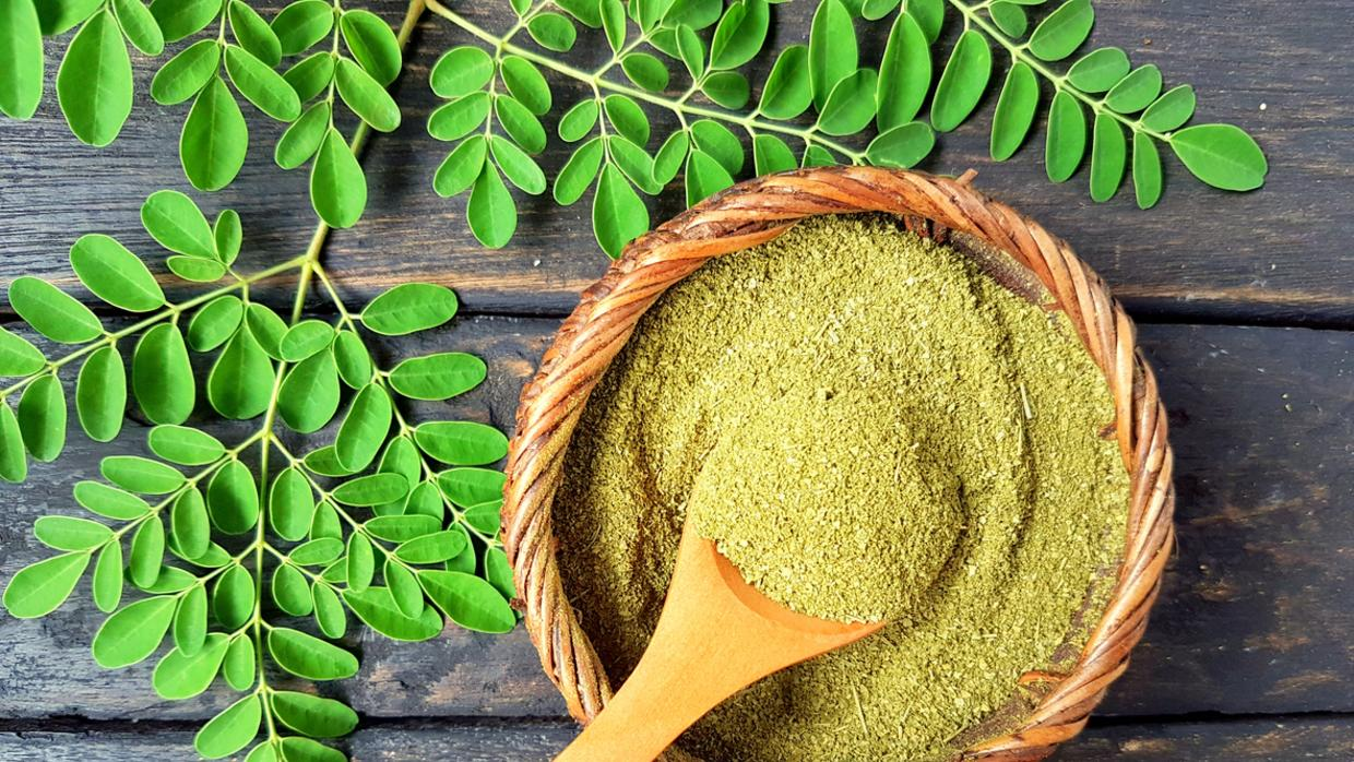curry leaves for pregnancy