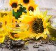 10 секретов подсолнечного масла для красоты и лечения волос
