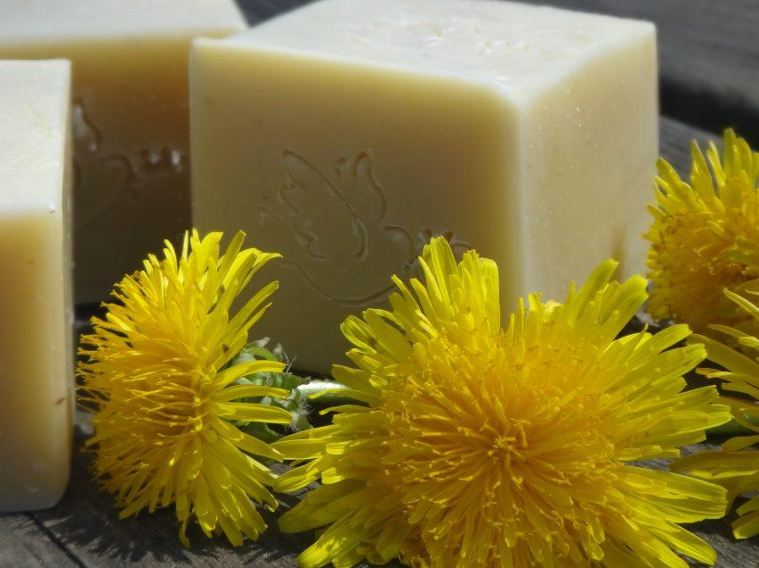 15 превосходных преимуществ мыла одуванчика для здоровья кожи