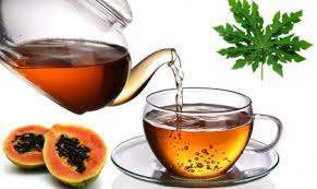 tea from papaya leaves