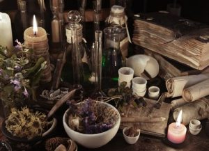 magical herbs for witch