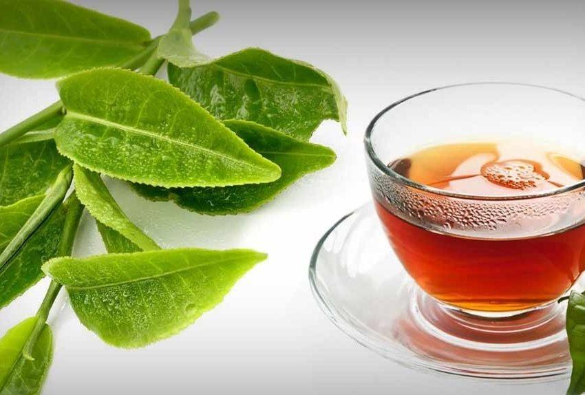 11 неожиданных преимуществ листьев гуавы для снижения веса