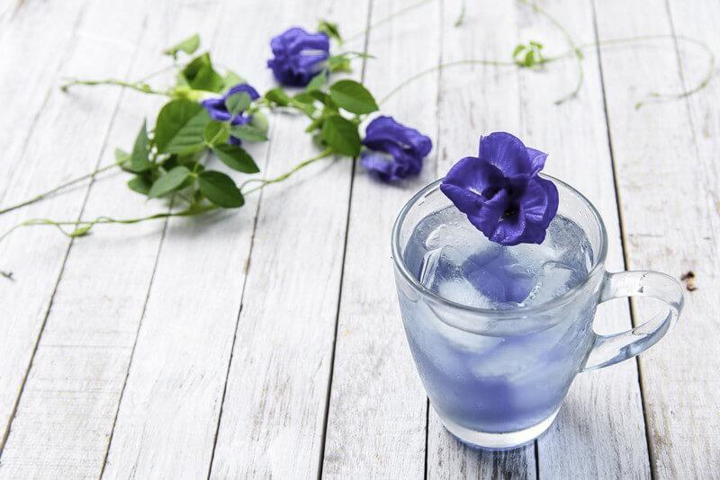 Польза цветов гороха бабочки для здоровья волос