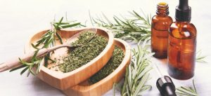 rosemary oil for respiratory system