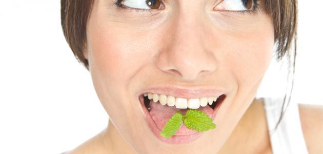 Польза листьев гуавы от зубной боли (проверенные домашние средства)