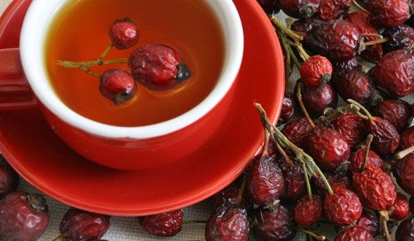 13 лучших полезных свойств супа из шиповника при симптомах простуды