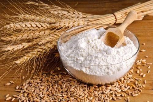 wheat powder
