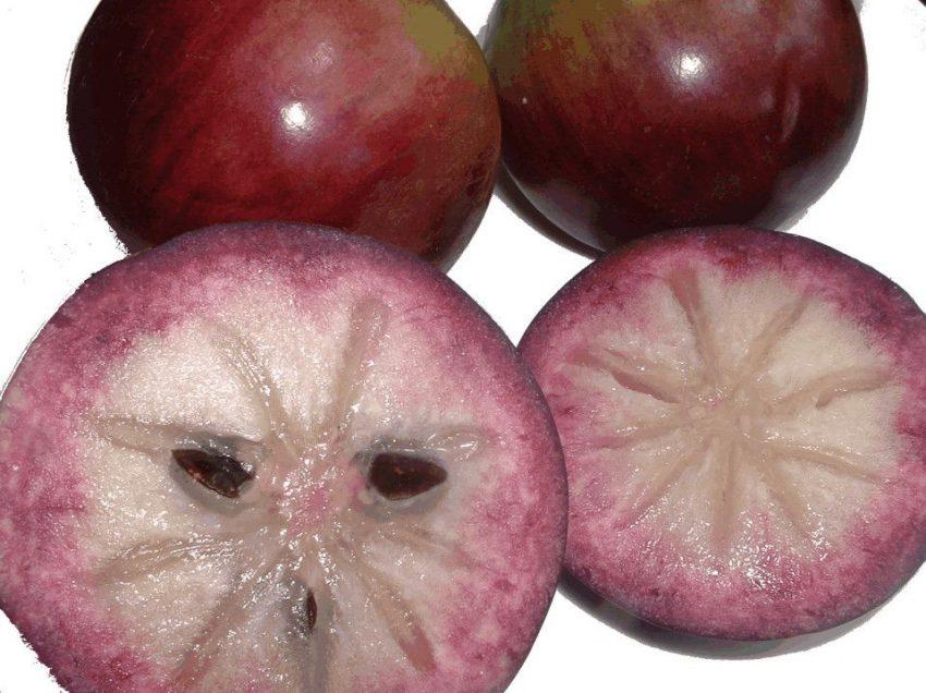15 полезных свойств ямайского звездчатого яблока для иммунной системы