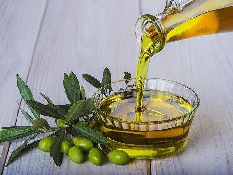zaitun oil